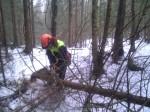 En bra gallringsdag i skogen