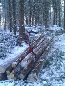 Brosslad hög i skogen