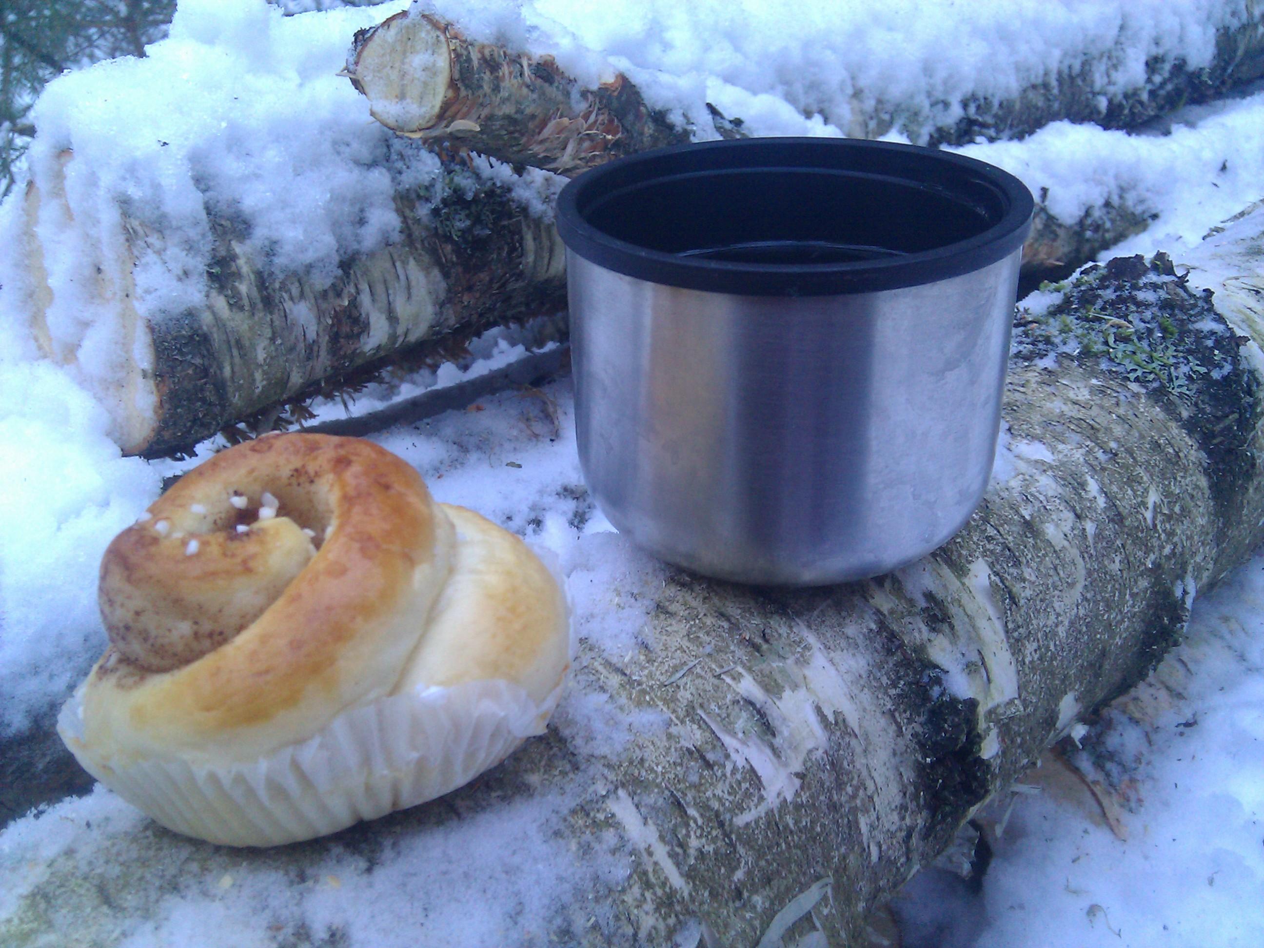 Te och kanelbulle i skogen