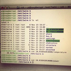 OWFS i en Raspberry Pi