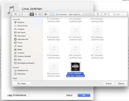Under Bildmaterial kan du lägga till en omslagsbild för ljudboken