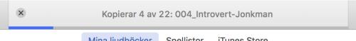 Vänta tills MP3-filerna importerats