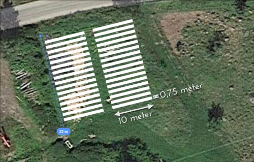 Planering av odlingsbäddarna på Broaker