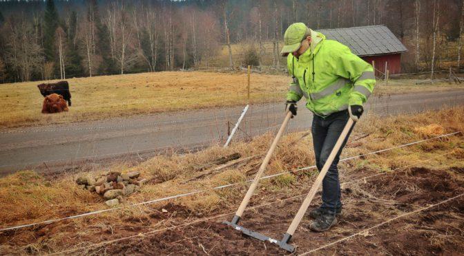 Anläggning av odlingsbäddar