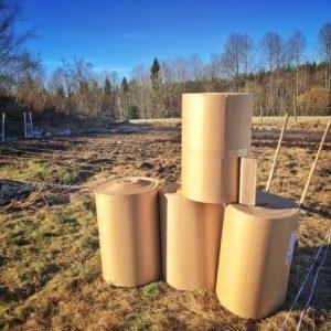 Pappersrullar till odlingsbäddarna