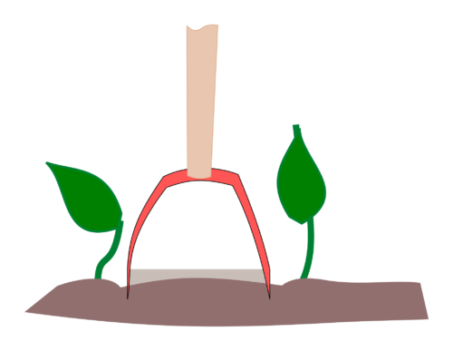 Skyffeljärn passar precis mellan grödorna