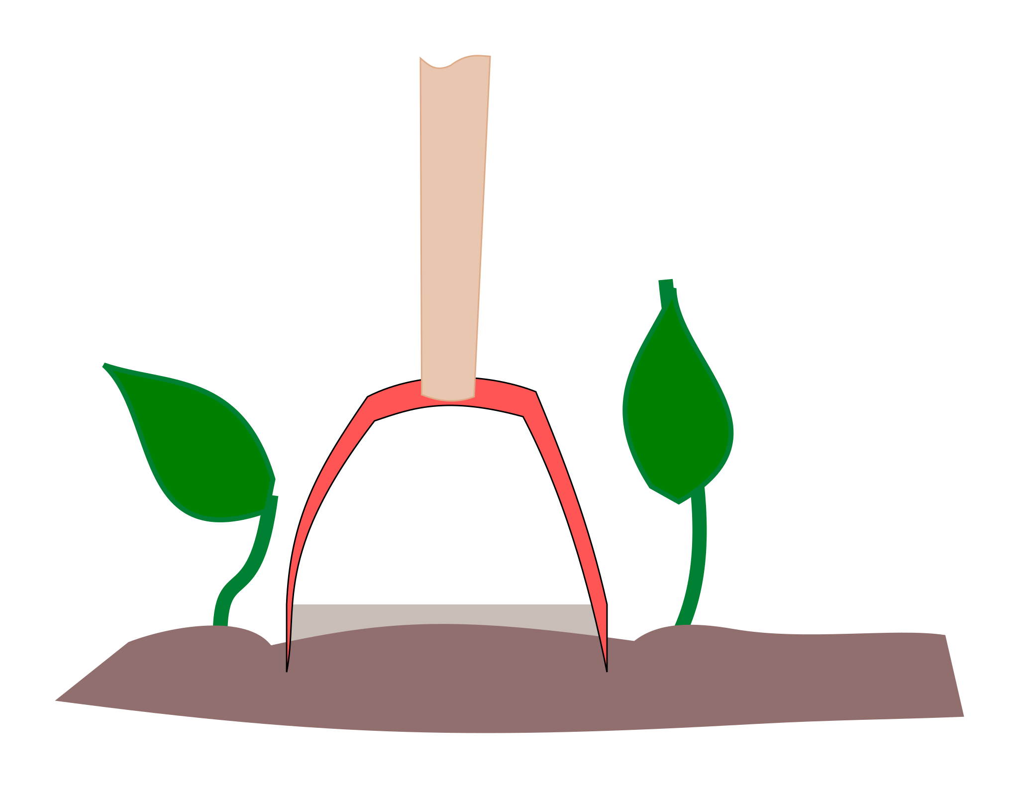 Lagom avstånd mellan plantor för ett skyffeljärn