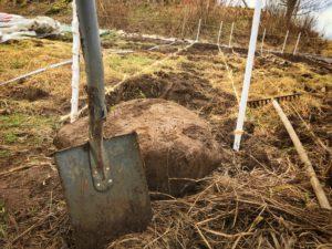Vi ser till att ta bort stenen i odlingsbäddarna