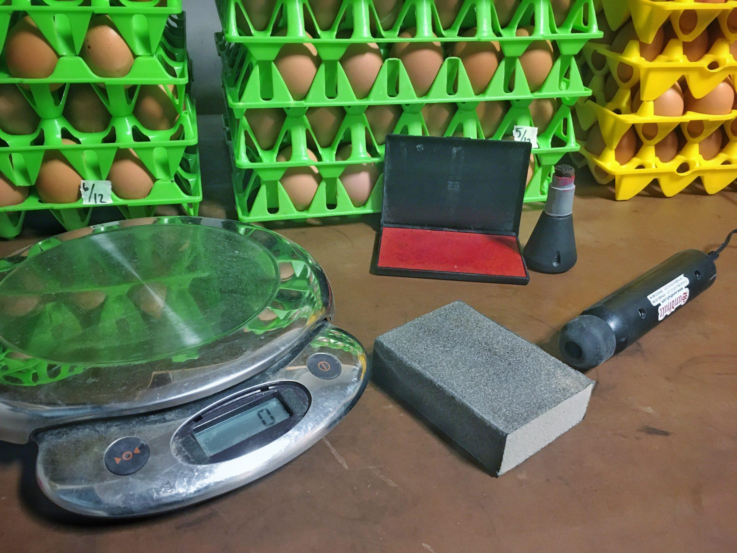 Utrustning i äggpackeriet