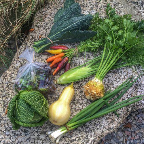 Innehåll från en grönsakskasse från Sundhult 2019