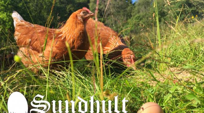 Klart med producentnummer för äggproduktion