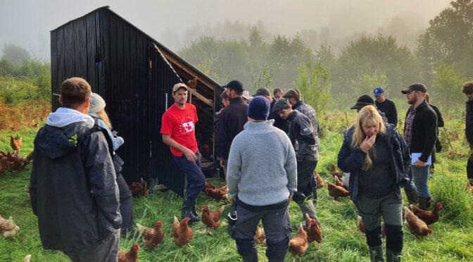 Intensivutbildning på Ridgedale Farm i regenerativt lantbruk